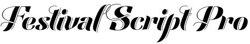 Festival Script font by Sudtipos
