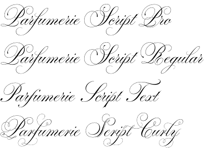 Parfumerie Script Font By Typesenses Elegance In Every Move