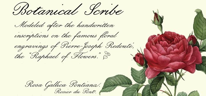 Botanical Scribe font
