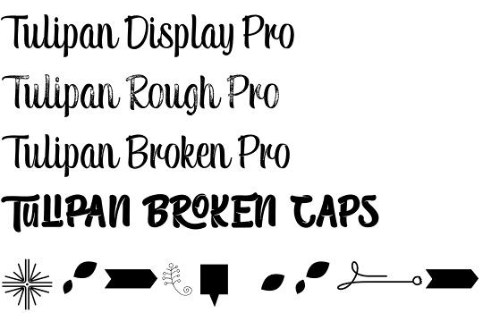 Tulipan font
