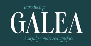 Galea Display