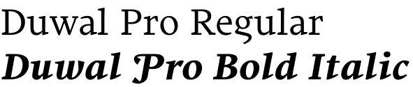 Duwal Pro font