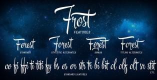 Frost script