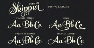 Skipper font