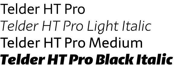 Telder HT Pro