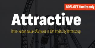 attractive type system